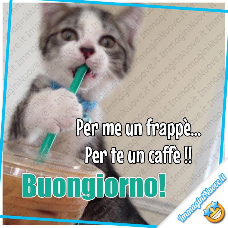 Per me un frappè, per te un caffè. Buongiorno !!!