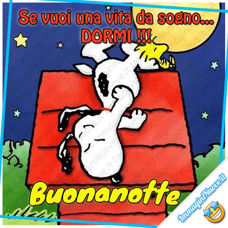 Se vuoi una vita da sogno: DORMI !!! Buonanotte