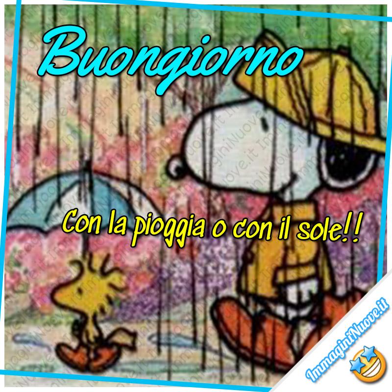 Buongiorno, con la pioggia o con il sole ! (Snoopy e Woodstock)