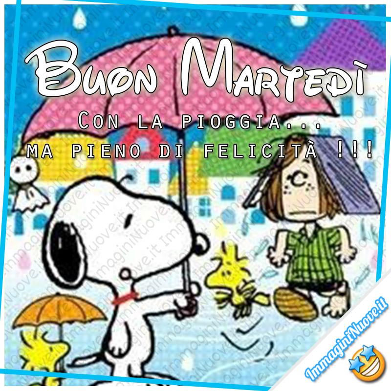 Buon Martedì, con la pioggia ma pieno di felicità !!!