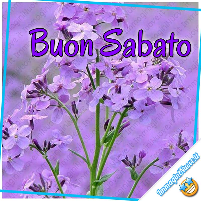 Buon Sabato (coi fiori)