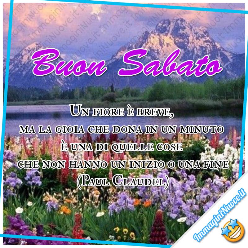 Buon Sabato, un fiore è breve, ma la gioia che dona in un minuto è una di quelle cose che non hanno un inizio o una fine (Paul Claudel)