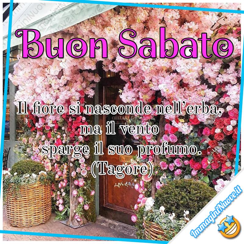 Buon Sabato, il fiore si nasconde nell'erba, ma il vento sparge il suo profumo (Tagore)