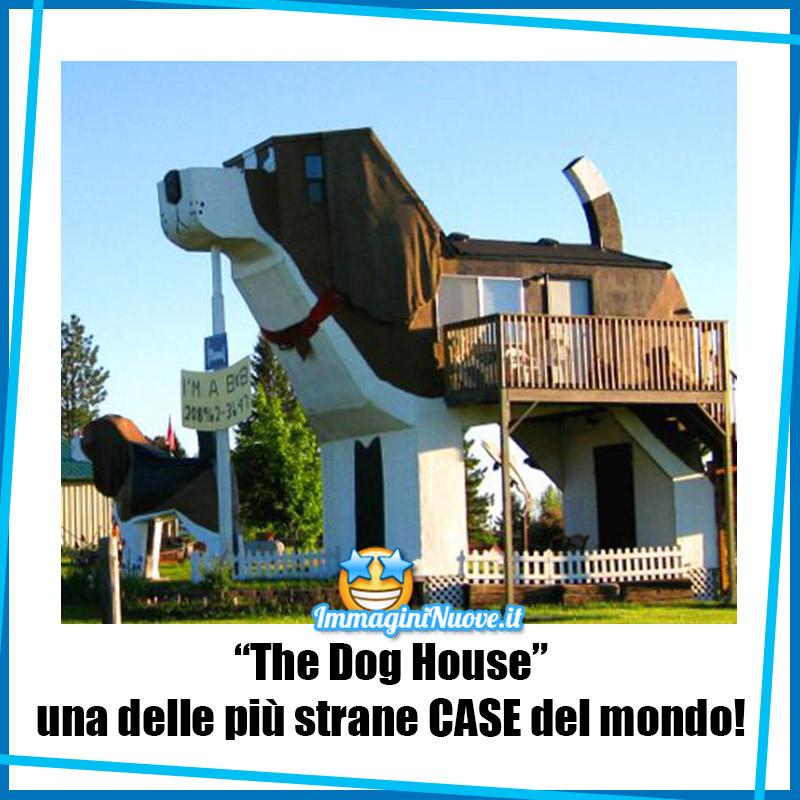 """""""The Dog House"""" una delle più strane CASE del mondo !"""
