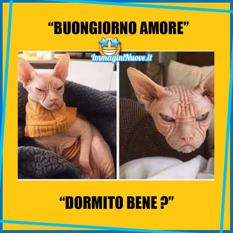 """""""BUONGIORNO AMORE, DORMITO BENE?"""""""