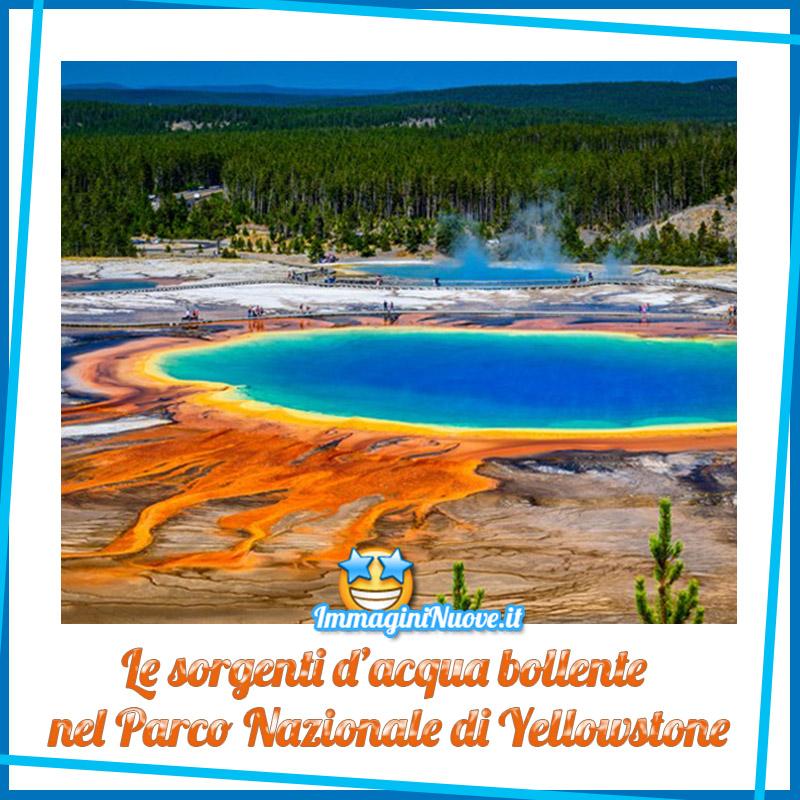 Le sorgenti d'acqua bollente nel Parco Nazionale di Yellowstone