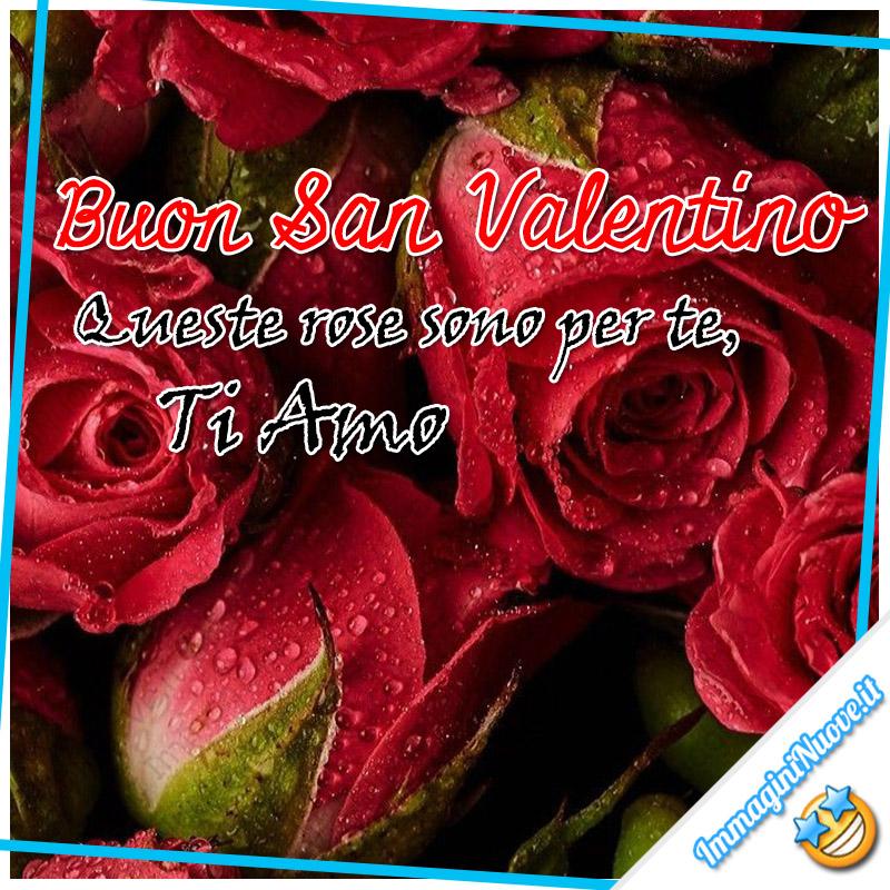 """""""Buon San Valentino. Queste rose sono per te, ti amo"""""""