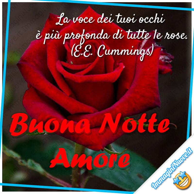 """Buona Notte Amore - """"La voce dei tuoi occhi è più profonda di tutte le rose."""" (E.E. Cummings)"""